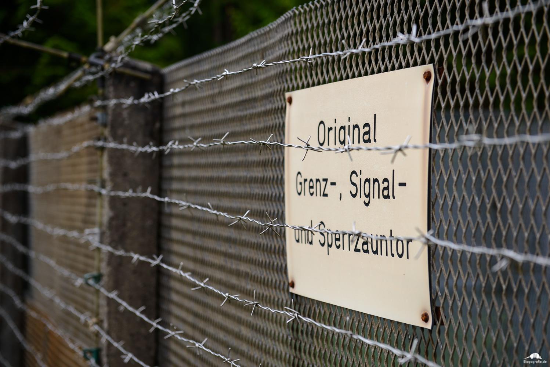 Grenzlandschaft Sorge - Signal- und Sperrzaun