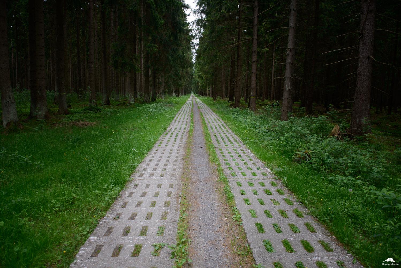 Grenzlandschaft Sorge - Kolonnenweg