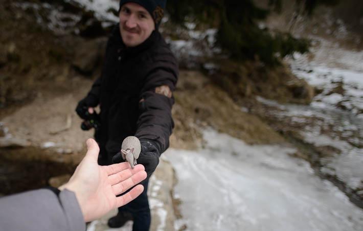 Mit Alex und dem Gürteltier im Harz
