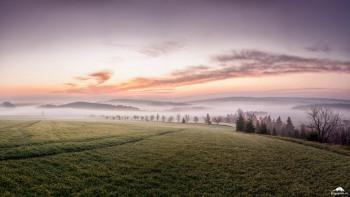 Morgennebel in Schwenda