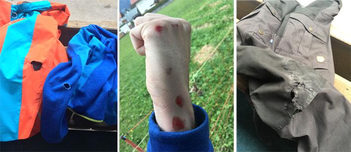 Biberwier - Unfall auf der Sommerrodelbahn