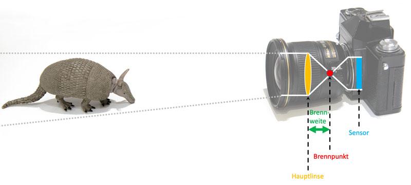 Schematische Darstellung bei 20 mm Brennweite bei einem Objektiv