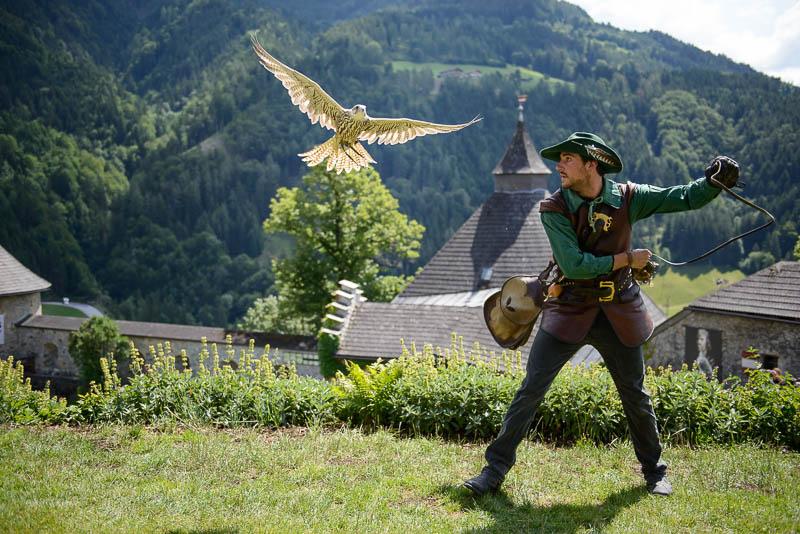 Greifvogelshow auf der Burg Hohenwerfen