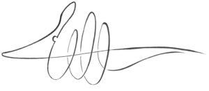 Gürteltier Logo - Entwurf 3 - Unterschrift