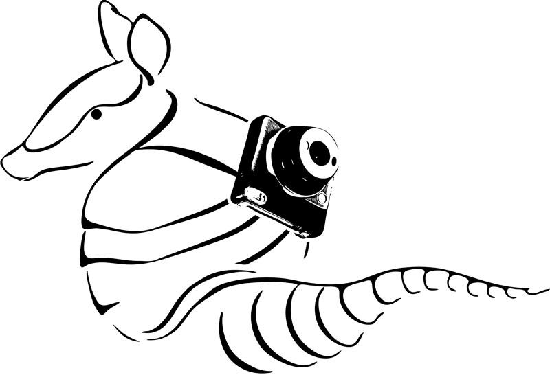 Gürteltier Logo - Entwurf 2 - Simplex