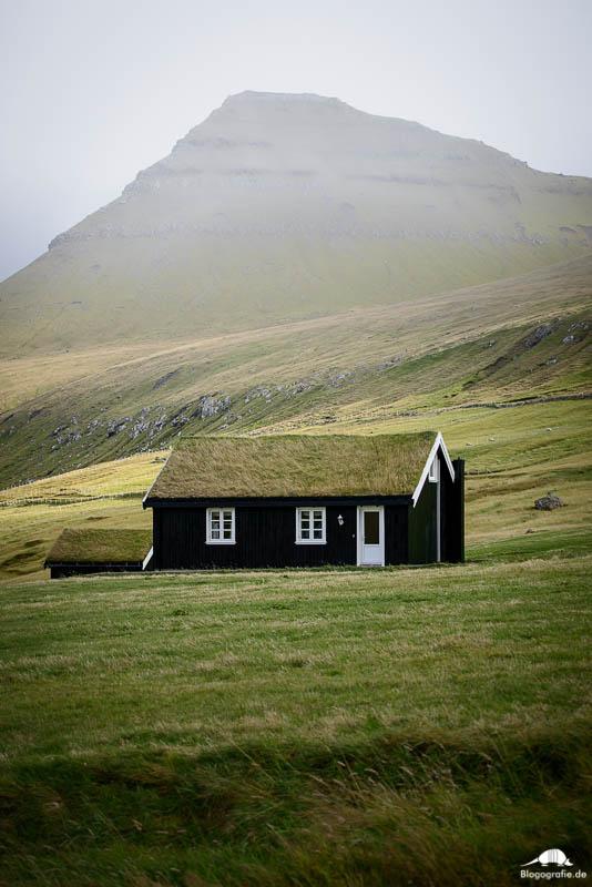 Haus mit Moosdach in Gjogv