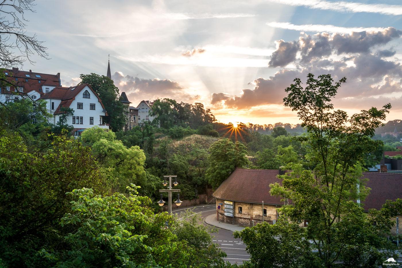 Sonnenaufgang in Halle Kröllwitz