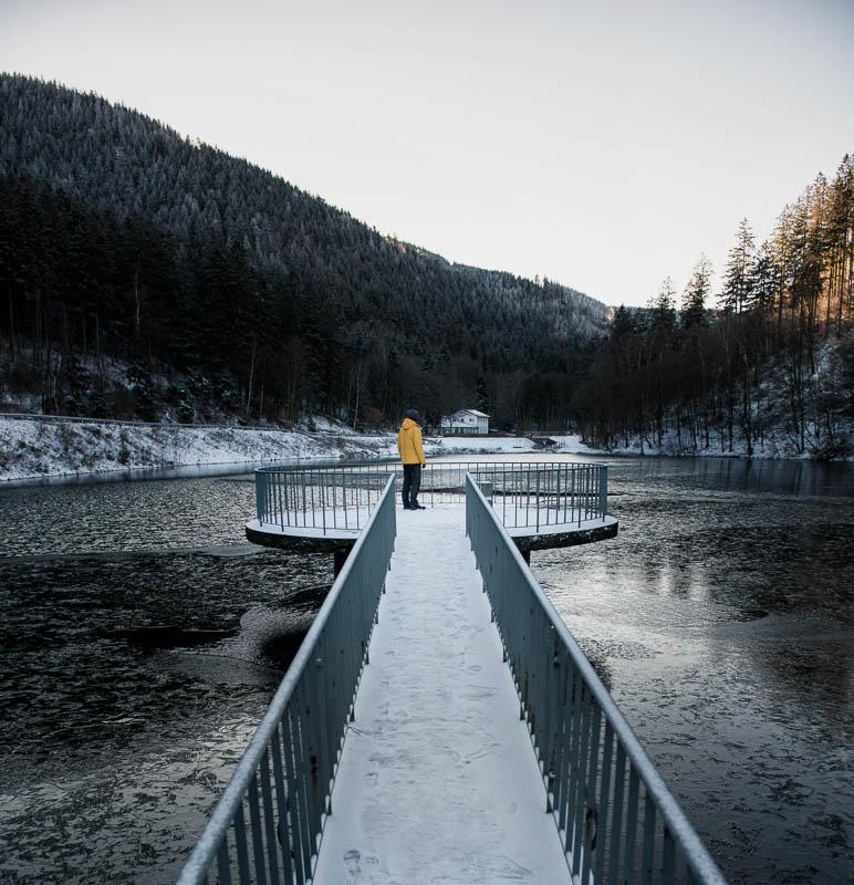 Der Herzberger Teich im Harz im Schnee