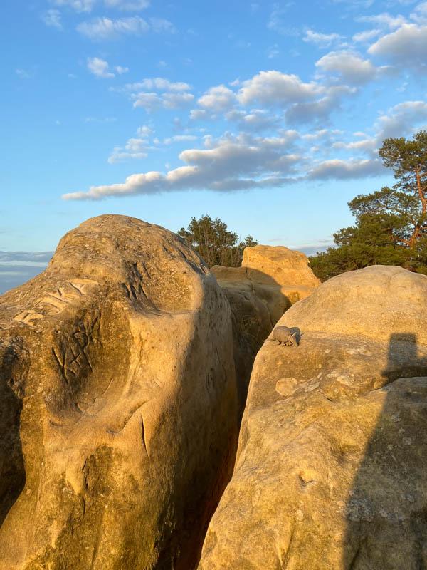 Das Blogografie-Gürteltier in den Klusbergen