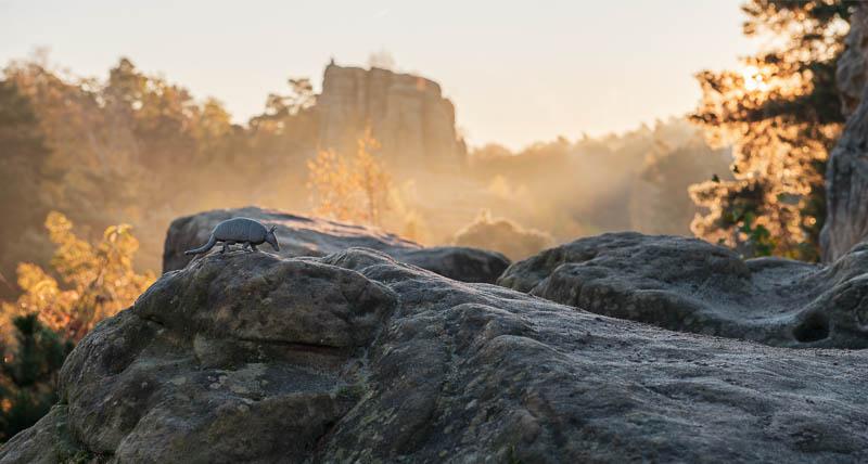 Blick vom Fünffingerfelsen zum Klusfelsen im Harz