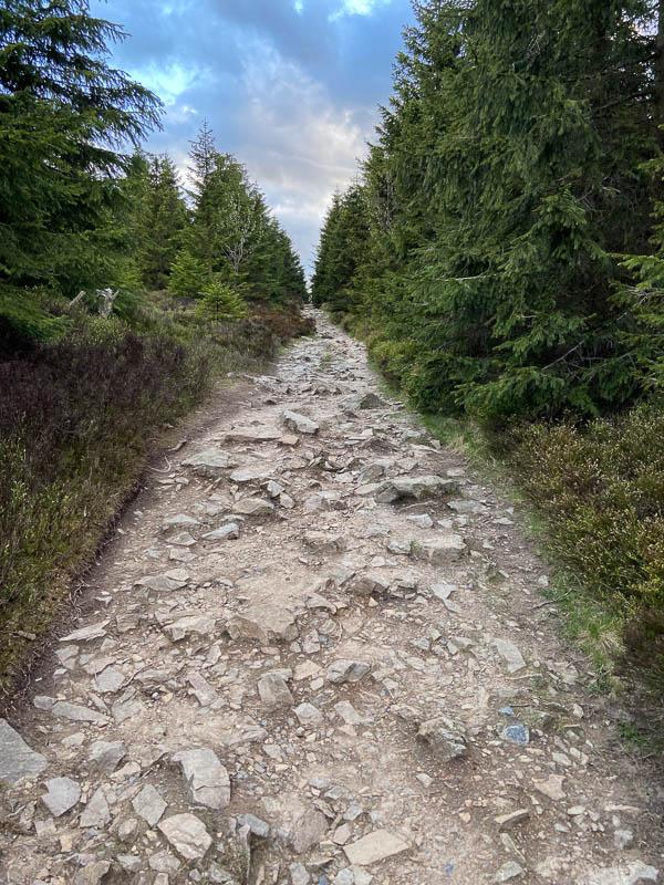 Der steinige Wanderweg zur Wolfswarte