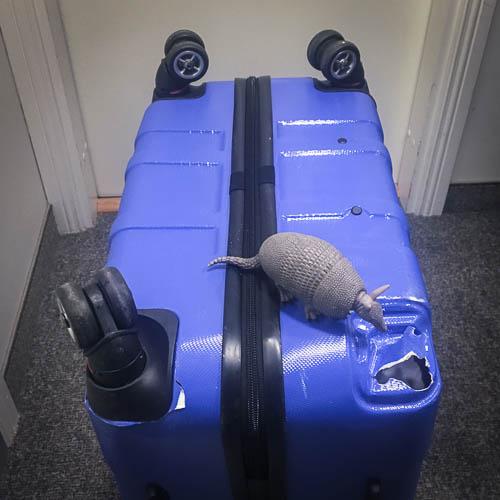 lofoten - koffer kaputt