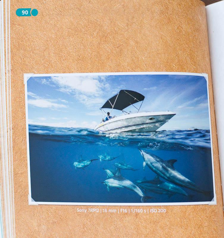 """Über- Unterwasserfoto aus dem Buch """"Urlaubsfotos nach Rezept"""""""