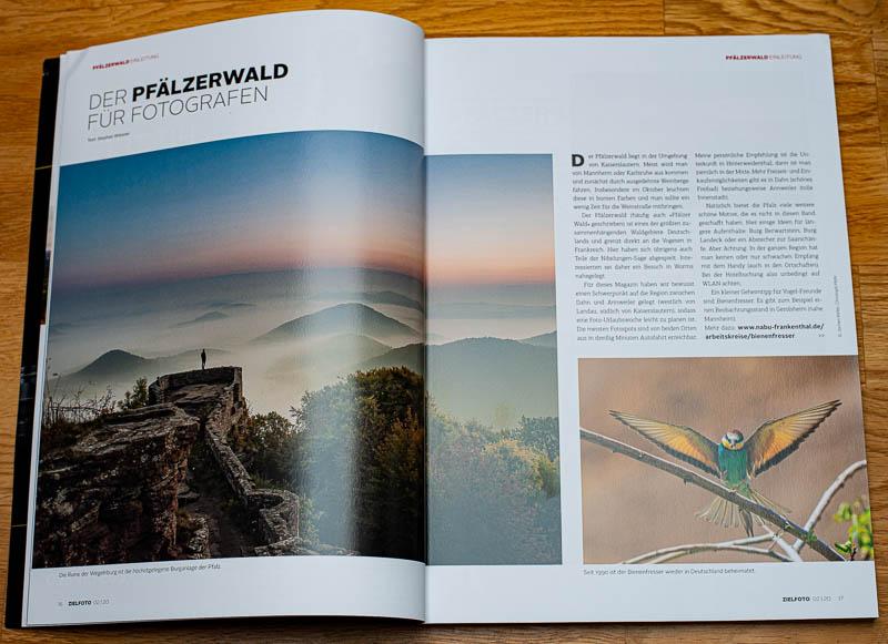 Der Pfälzerwald für Fotografen im ZIELFOTO-Magazin Fotografieren in Pfälzerwald und Schwarzwald